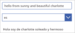 Translate text from English to Spanish